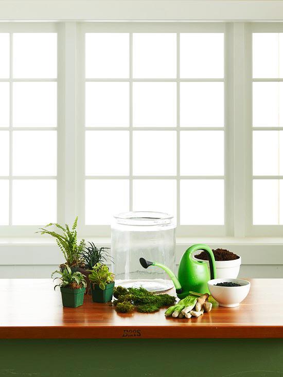 مواد لازم •گلدان شیشهای • خاک گلدان • زغال چوب • گیاهان کوتاه و مینیاتوری • خزه • دستکش • آبپاش • بیلچه