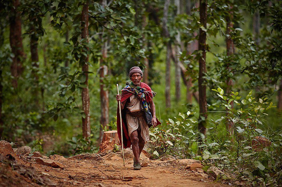 افراد مسن این قوم بعد از یک شکار موفق، با یک میمون به چادر خود باز میگردند. برای شکار میمون از تورها و تلههای خاصی استفاده میکنند. جا دارد اشارهکنیم که شکار در این قبیله فقط توسط مردان صورت میپذیرد.