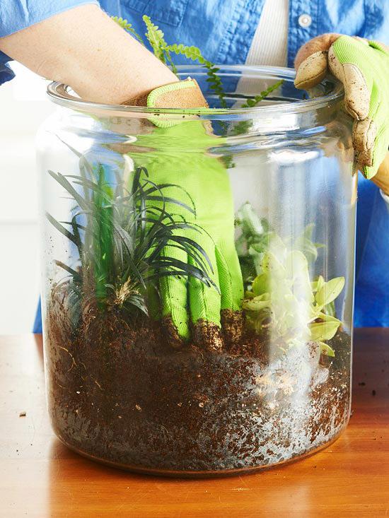 با دست خاکهای اطراف هر گیاه را به پایین فشار دهید تا خاک آنها سفت شوند. ترجیحا گیاهانی را انتخاب کنید که ارتفاع آنها از قد گلدان شیشهای کوتاهتر باشد.