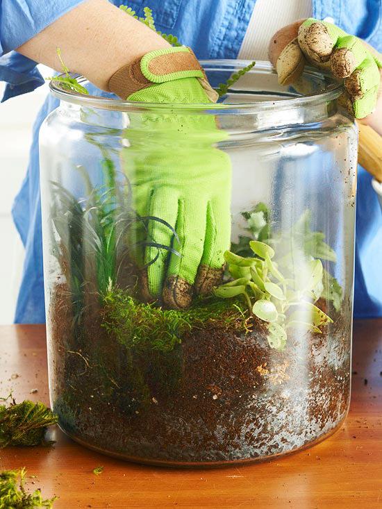 در این مرحله خزهها را با دست میان گیاهان و روی خاک قرار دهید.