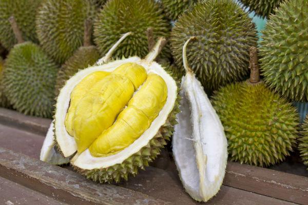 Durian-w600