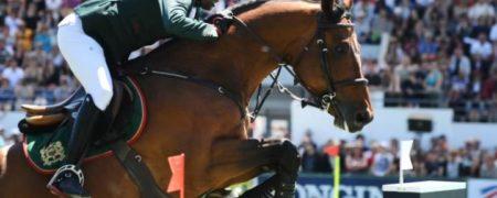 اسب پادشاه مراکش