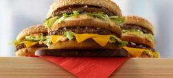 همبرگر در برابر اسید سولفوریک چه واکنشی نشان می دهد [تماشا کنید]