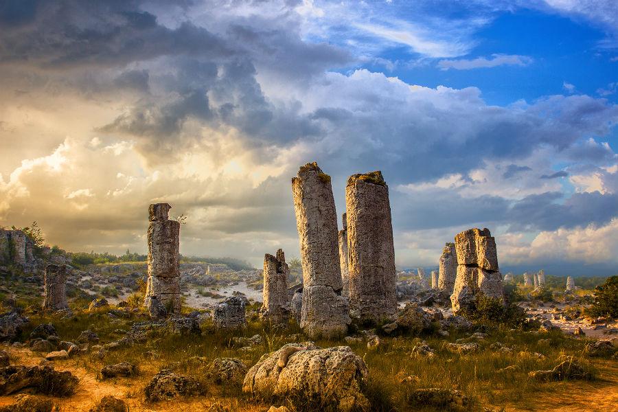 با Pobiti Kamani آشنا شوید؛ جنگل سنگ در بلغارستان