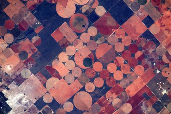 astronaut-jeff-williams-03-w600