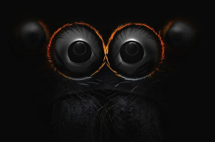 چشمان عنکبوت جهنده