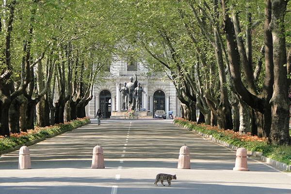 فرصت های تحصیلی و بورس در دانشگاه ۵۰۰ ساله استانبول
