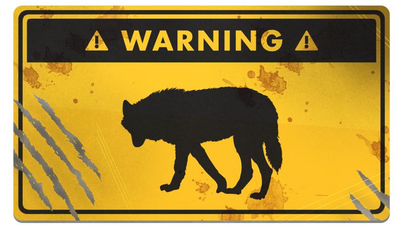 راهنمای بقا: چگونه از حمله گرگ جان سالم به در ببریم؟