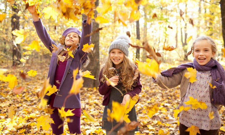 خطرات پنهان در زیر برگ های پائیزی