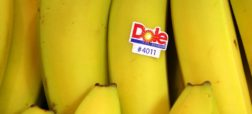 آیا می دانید برچسب های روی میوه ها برای چیست؟