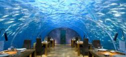 شما با مراجعه به رستوران دریایی «ایتا» در کشور مالدیو می توانید غذای خود را در زیر آکواریومی بزرگ میل کنید