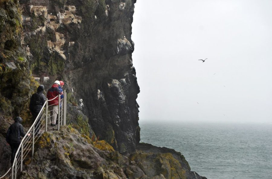 ANTRIM, NORTHERN IRELAND - AUGUST 19: Tourists make their way along The Gobbins coastal path and trail on August 19, 2015 in Antrim, Northern Ireland. The Islandmagee cliff path walk has reopened after six decades of closure and a ?7.5 million investment. Comprimising of suspension tubular bridges, caves, steps and tunnels carved through the north Antrim coastline the trail was once a thriving 1900's hotspot for walkers and thrill-seekers. Designed by Irish railway engineer Berkley Deane Wise and opened in 1902 to Edwardian era visitors the path comes with a health warning for those weak of heart or suffering from a general lack of fitness due to it's steep incline. (Photo by Charles McQuillan/Getty Images)
