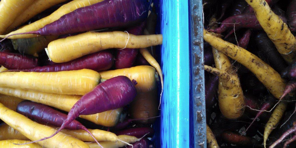 ۱۲ حقیقت عجیب در مورد خوراکی ها