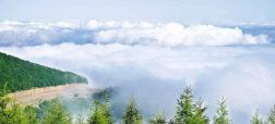 پاییز گردی رویایی در جنگلی بر فراز ابر ها