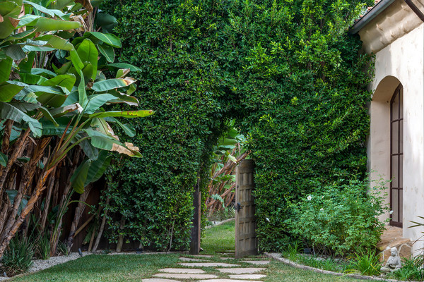 در میان دیواری که از گیاهان پوشیده شده یک در چوبی ساخته شده که همانند یک باغ مخفی است.