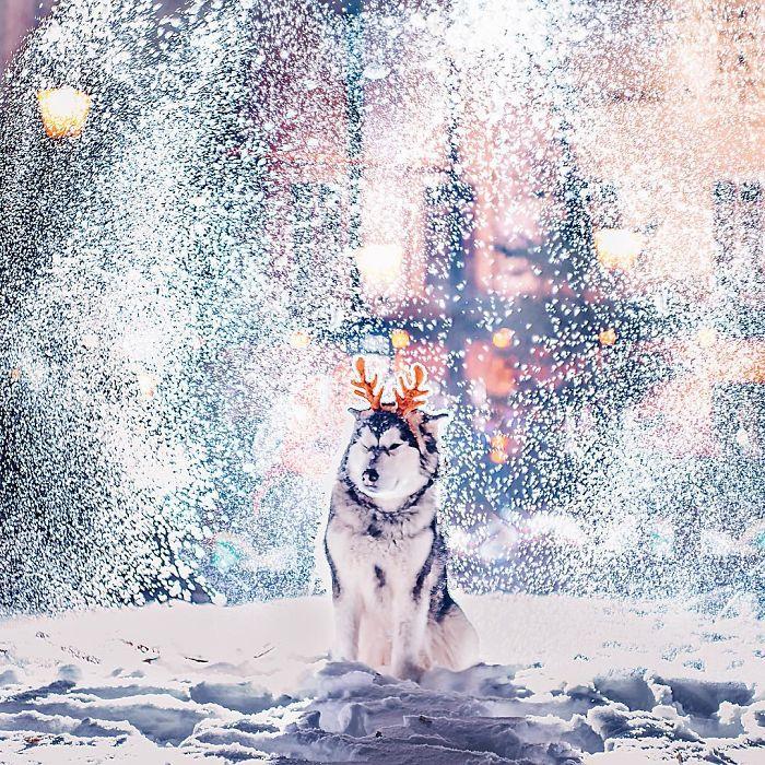 مسکو در برف