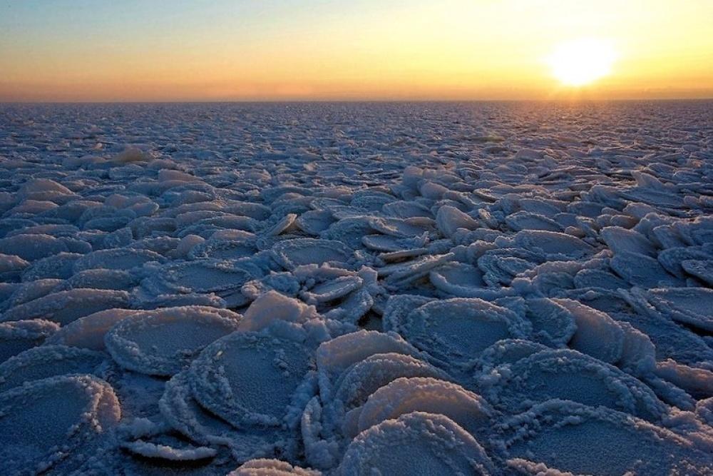 یخ های پنکیکی