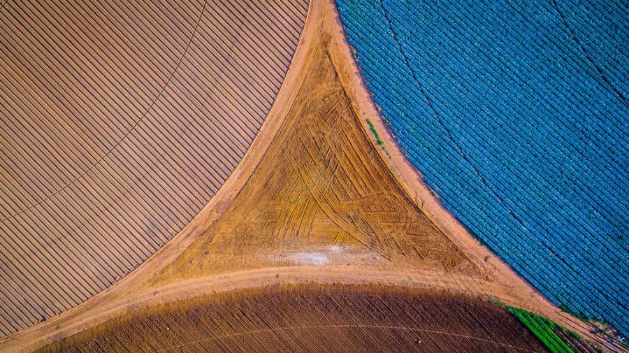 شکل هندسی بسیار زیبائی که زمین های زراعی و کشاورزی در کنار یکدیگر ایجاد کرده اند، با مهارت بسیار خوبی به ثبت رسیده است.
