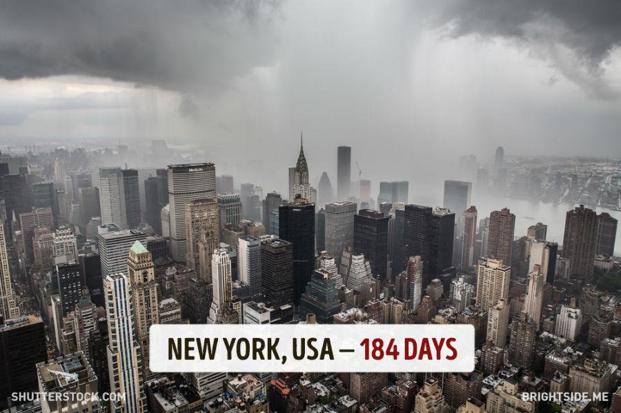 نیویورک - آمریکا - 184 روز