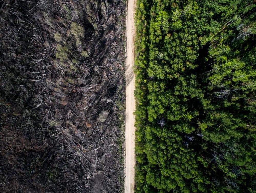 جاده ای که به آتش پایان بخشیده