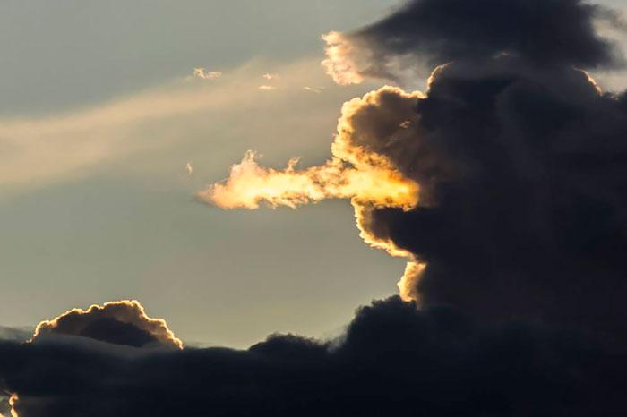 9 29 پدید آمدن اشکال زیبای پرنده ها و حیوانات در ابرها