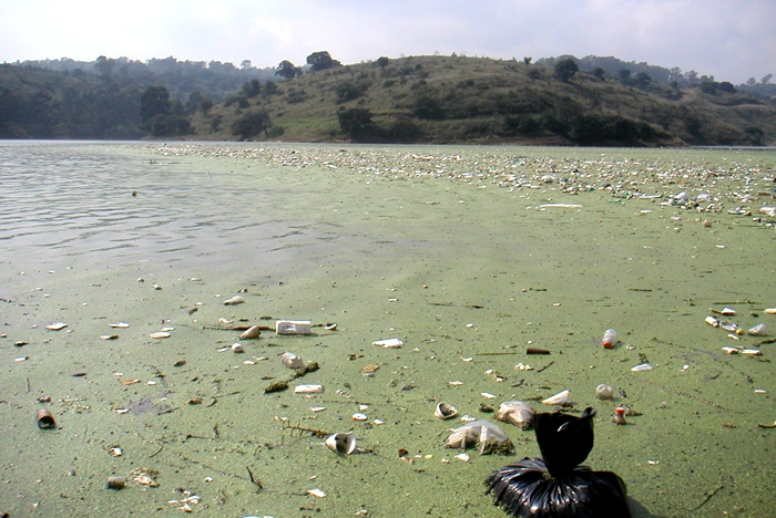 uaf-2010-lake-guadalupe