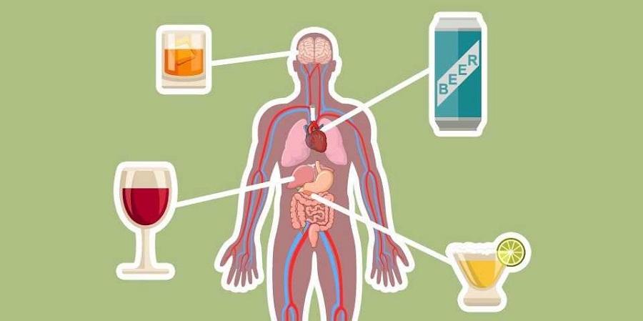 مصرف الکل چه تاثیری روی مغز و بدن انسان دارد؟ [اینفوگرافیک]