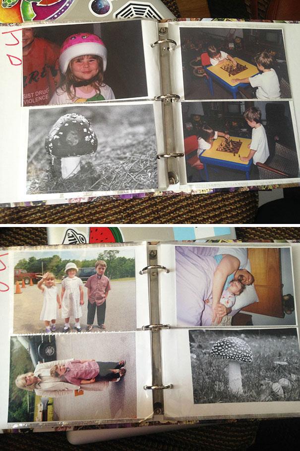 پدر و مادرم برای اینکه به من و برادرم نشان دهند که ما یک برادر دیگر هم داشته ایم که به خاطر حمام نرفتن به قارچ تبدیل شده، یک آلبوم عکس خانوادگی درست کرده و در میان عکس های خودمان، تصاویری از قارچ را هم گنجانده اند.