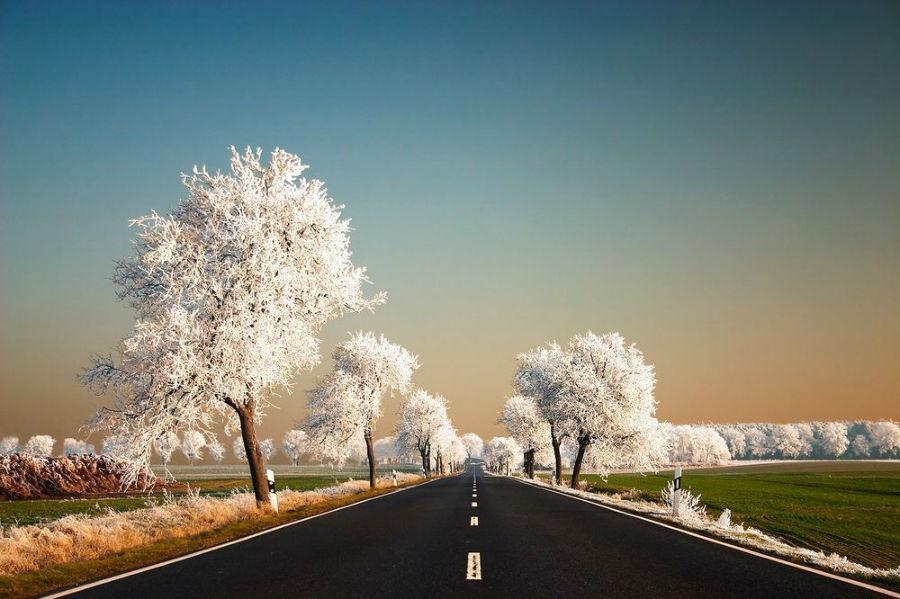 هنر بی بدیل و خلاقیتِ بی نظیر زمستان