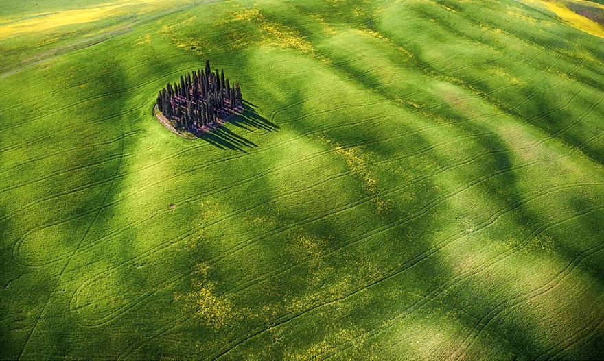 امواج سبزرنگ - نفر دوم بخش «زیبائی» - زیبائی شناسی