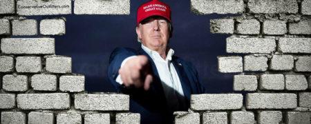 Donald-Trump-Wall-w750