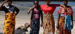 سفر به ماداگاسکار؛ آفریقا گردی هیجانی در سرزمین لمورها