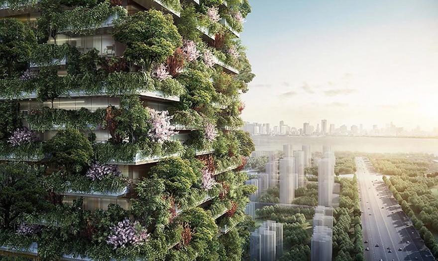 نخستین جنگل های عمودی در آسیا در کشور چین ساخته می شوند