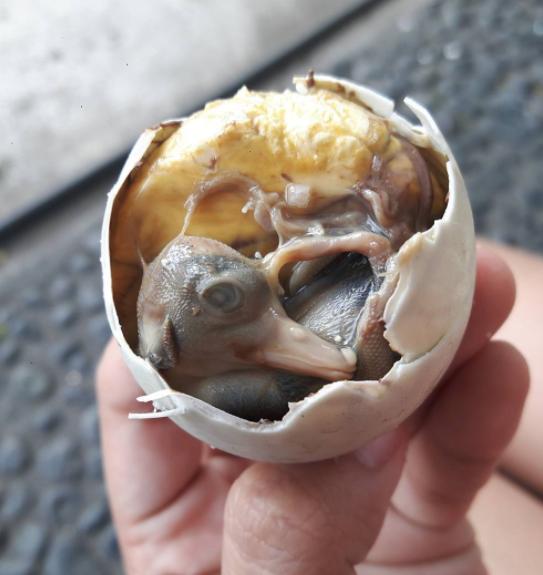 یکی از چندش آورترین غذاهای فیلیپین، جنین تخم اردک است که حاوی مایع آمنیوتیک بوده و جنین سه هفته ای اردک محسوب می شود.