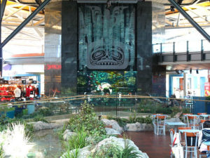 Vancouver_Airport_Aquarium-w900-h600