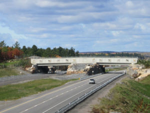 animal-bridges-wildlife-crossings-72-58aaacd3712cd__880-w900-h600