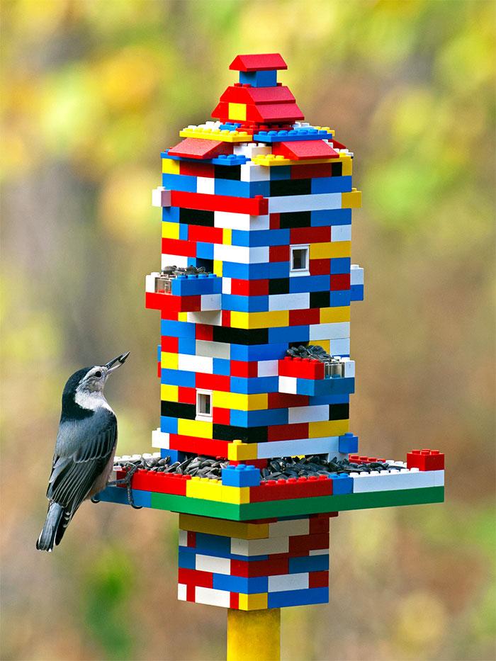خانه ای برای غذا دادن به پرندگان