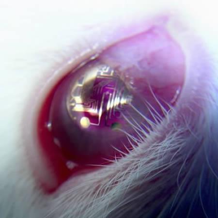 لنزهایی که مدارهای الکترونیکی و نوری درون آن ها تعبیه شده اند توسط دانشمندان دانشگاه واشنگتن در حال توسعه هستند تا به جای هدست های واقعیت مجازی درون چشم کاربر قرار گرفته و دنیایی از خیال و واقعیت را برایش مهیا نماید. آن ها برای این منظور از لنزهای انعطاف پذیر و مطمئن که مدارهای الکترونیکی روی آن ها چاپ شده استفاده کرده اند. این طرح در حال حاضر روی خرگوش ها مورد آزمایش قرار گرفته است.