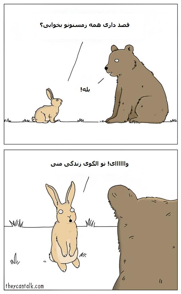 Funny-Animal-Comics-They-Can-Talk-Jimmy-Craig-Part2-016-58b3f06eb9faa__605