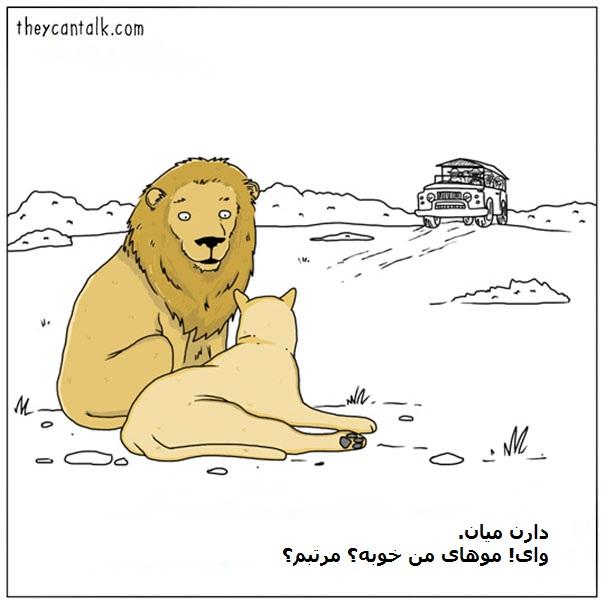 Funny-Animal-Comics-They-Can-Talk-Jimmy-Craig-Part2-04-58b3ef87bc8f9__605