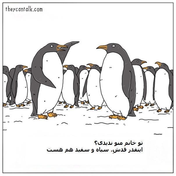 Funny-Animal-Comics-They-Can-Talk-Jimmy-Craig-Part2-05-58b3ef97dd298__605