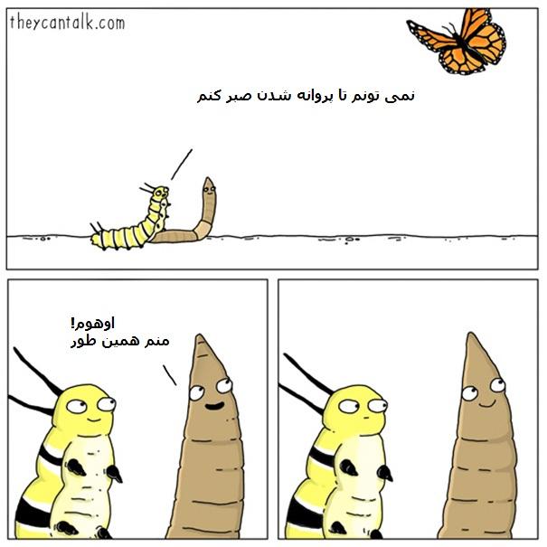 funny-animal-comics-they-can-talk-jimmy-craig-part2-7-57ea592f7ccb5__605
