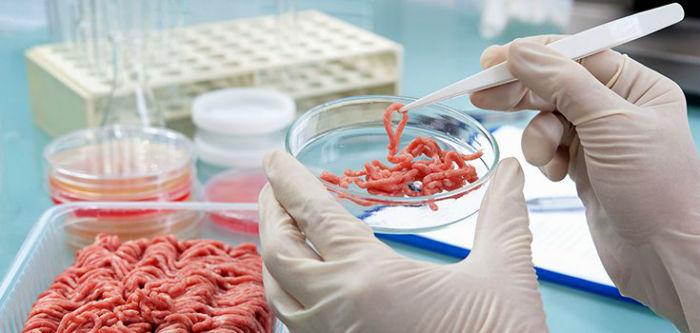 meat-test-tube-lab-735-350-w700