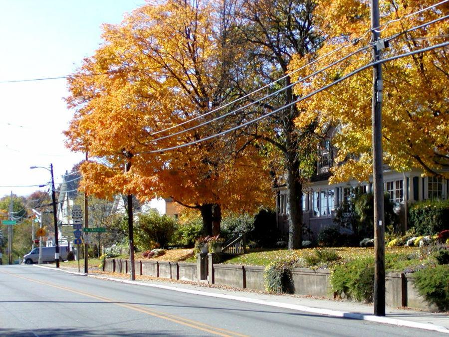 بدمینستر یکی از شهرستان های نیوجرسی است که بر اساس سرشماری سال 2010، فقط 8165 جمعیت دارد. این عکس یکی از خیابان های این شهرستان است که به خیابان اصلی منتهی می شود.