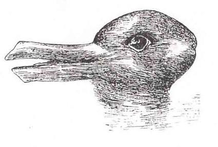 خرگوش یا اردک؟