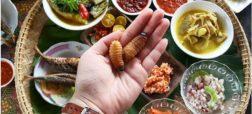 کرم درخت خرما یکی از غذاهای محبوب کشور مالزی است. با اینکه ظاهر زشتی دارد اما خواص زیادی برای آن ذکر شده. مردم مالزی این کرم ها را زنده می خورند.