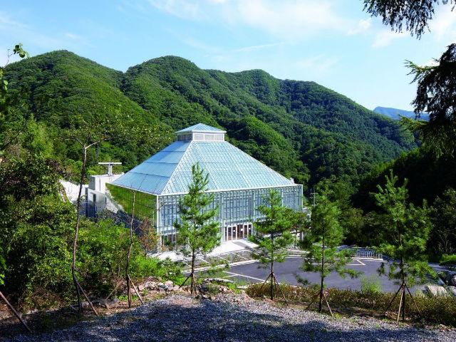 کلیسای «نور زندگی» در شهر سئول در کره جنوبی نیز قرارگاه عشاقی است که می خواهند پیمان زناشوئی ببندند.