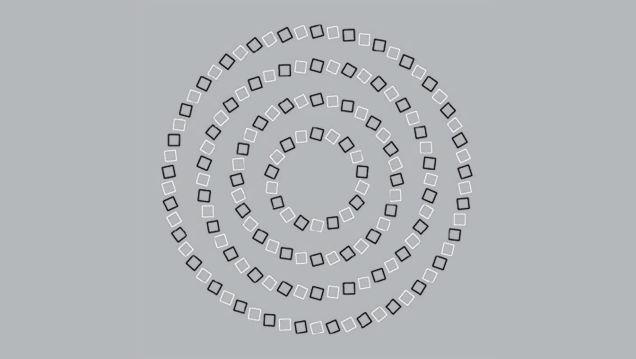ابتدا 4 دایره کامل می بینید و فقط کافی است به مربع های کوچک نگاه کنید، تصویر مارپیچ و در هم دیده خواهد شد.