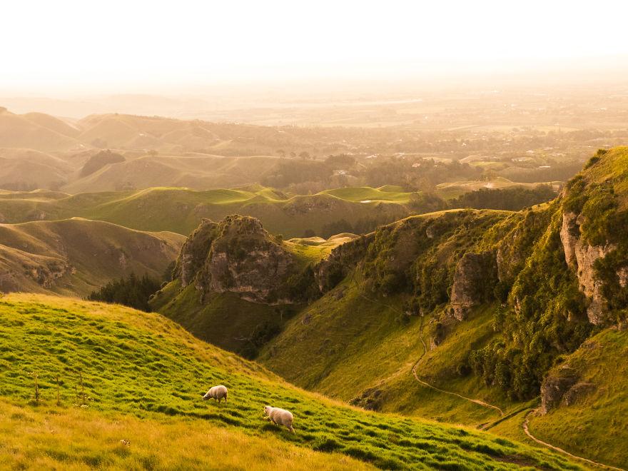 گوشه ای از چشم اندازهای رویایی نیوزیلند