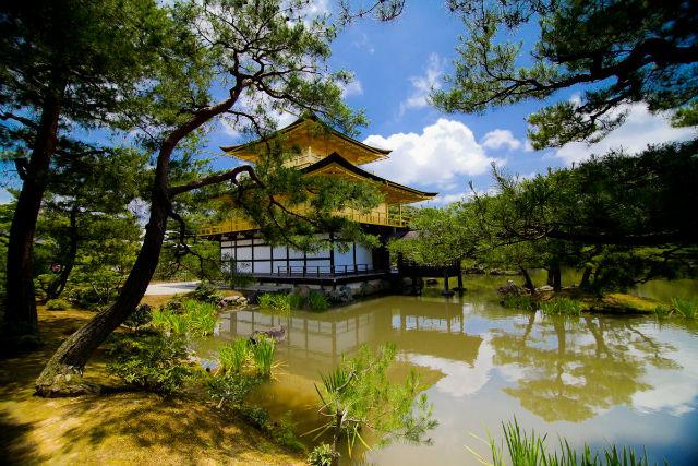 حل شدن در طبیعت یکی از قدیمی ترین روش های معماری در دنیا محسوب می شود که از بارزترین نمونه های آن می توان به «ایوان طلایی» کیوتو در کشور ژاپن اشاره کرد.